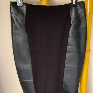 Classiques Entier Skirt with Leather